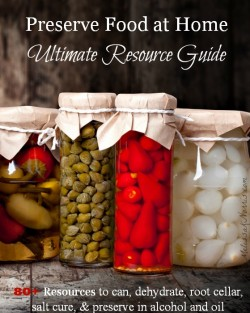 Preserve Food at Home Ultimate Resource Guide